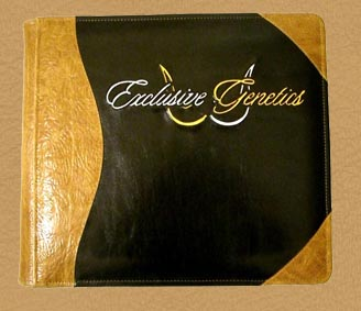 custom & personalized leather photo albums and guest books